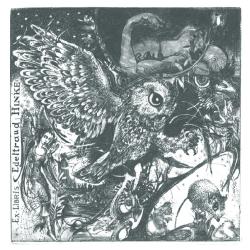 Edeltraud Hinke - Owl and night
