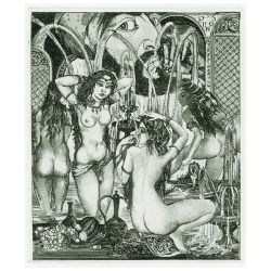 Wolfgang Pungs - Harem and Sultan
